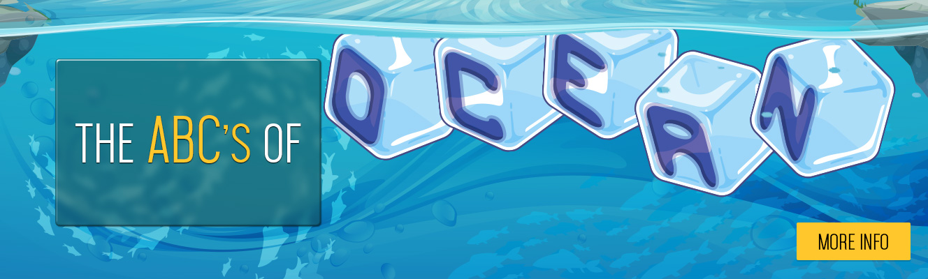 The ABCs of Ocean